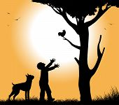 picture of bird-dog  - dog with his dog under a tree in the sunset - JPG
