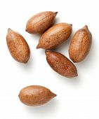 picture of pecan nut  - Pecan nuts in nutshells isolated on white background - JPG