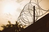 picture of barbed wire fence  - barbed wire fence razor silhouette at sunset - JPG
