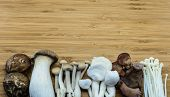 picture of edible mushroom  - From left - JPG