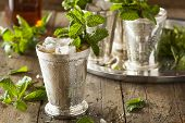 picture of mint-green  - Refreshing Cold Mint Julep for the Derby - JPG