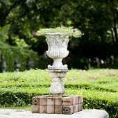 foto of planters  - Closeup decoration design Stone planter with flowers in park - JPG