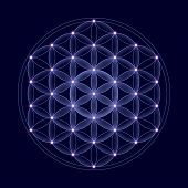 stock photo of spiritual  - Cosmic Flower of Life with stars on dark blue background - JPG