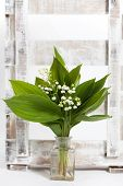 foto of wooden crate  - Lilies of the valley in a wooden crate - JPG