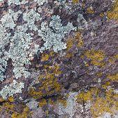 pic of granite  - Natural granite stone texture background - JPG