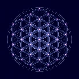 picture of cosmic  - Cosmic Flower of Life with stars on dark blue background - JPG