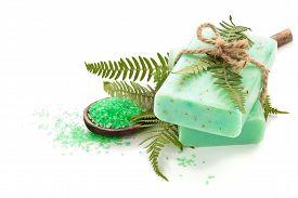 stock photo of fern  - Green soap and fern leaves - JPG
