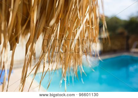 Swimming pool under the straw umbrella.
