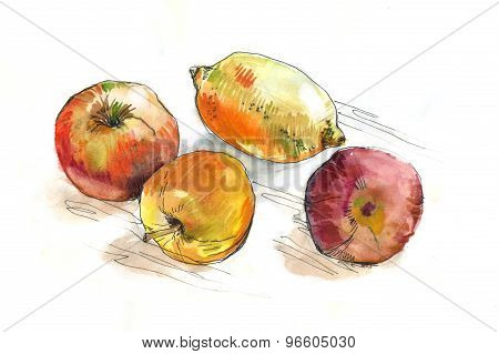 watercolor fruit on the table
