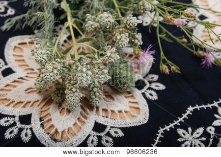 Herbs and Lace