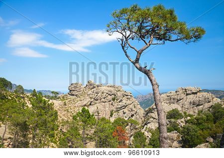 Nature Of Corsica Island, Mountain Landscape