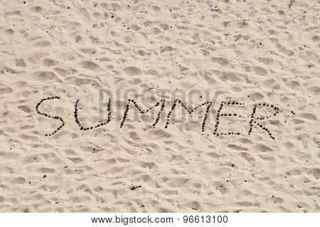 Summer Word From Conifer Cones On Sand Surface