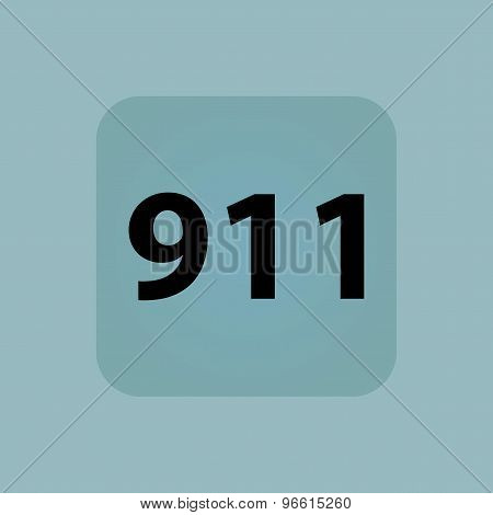 Pale blue 911 icon