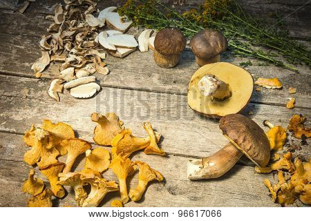 Fresh Chanterelle And Boletus Edilus Mushrooms On A Wooden Table