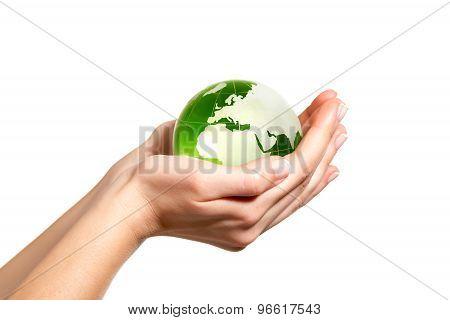 Green World In Hand