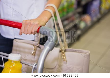 Woman buy products with her trolley at supermarket