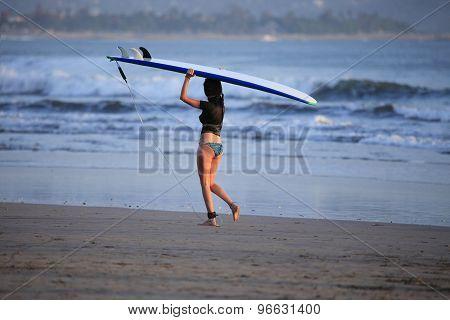 Surfers On A Coastline