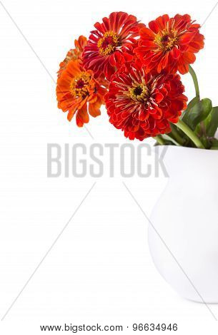 Bouquet Of Red Zinnia Flowers In A Jar