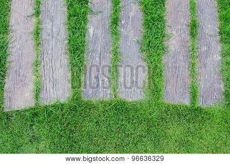 Concrete Footpath Look Like Timber On Green Yard
