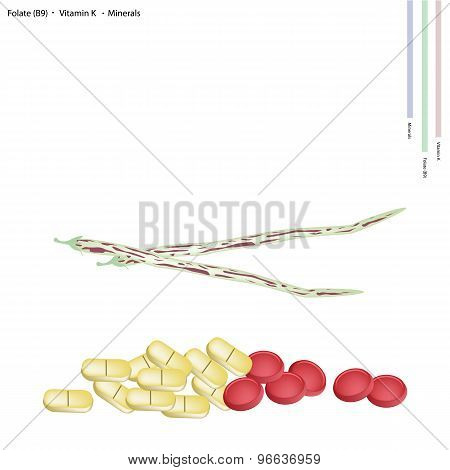 Centrosema Pubescens Pods with Vitamin B9 and K