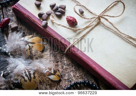 Corded Book With Beads, Dogrose, Pine Nuts And Earrings With Feathers Close-up