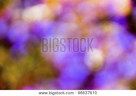Green, Purple, Yellow Defocused Bokeh Abstract Background