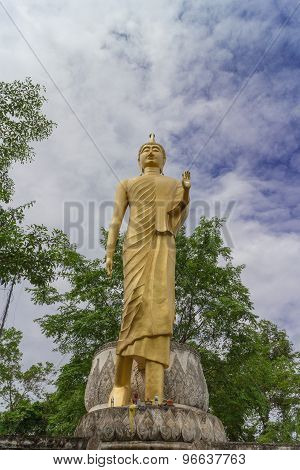 the gold buddha statue standing with tree and sky