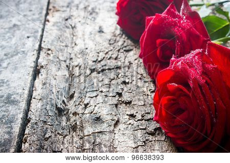 Three Red Roses In A Row With Water Drops On Wooden Background