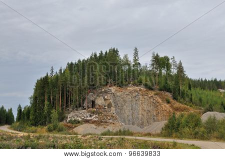 Forest Cliff