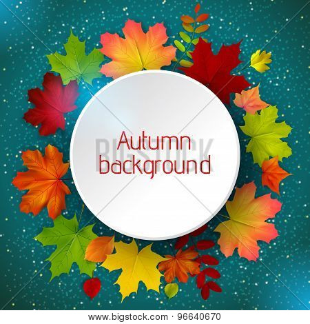 Round Border Of Various Autumn Leaves On Blue