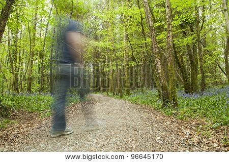 Blur Photo Of A Person In The Woods