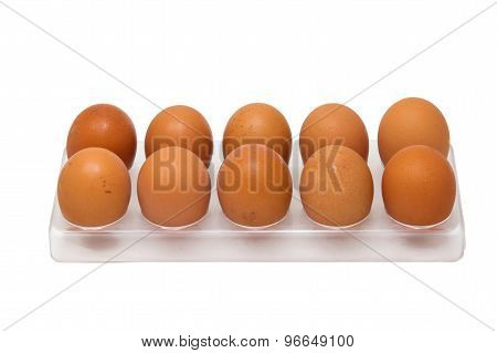 10 Chicken Eggs In Egg Tray