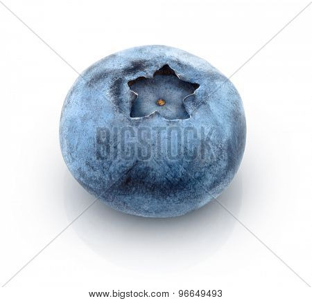 Fresh blueberry. Isolated on white background
