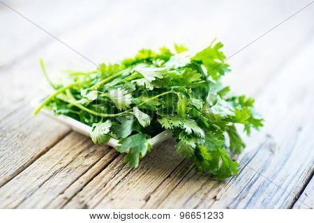 fresh parsley on wooden table