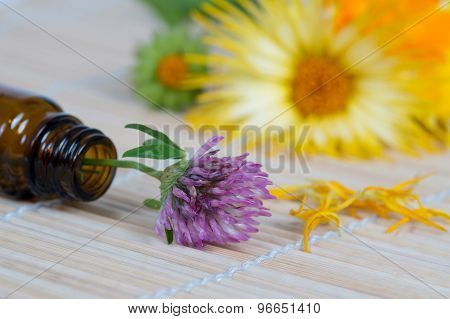 Bottle, Clover And Calendula On Bamboo Plate