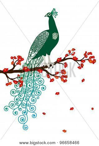 Vector illustration of green abstract peacock on the red blossom tree branch on white background
