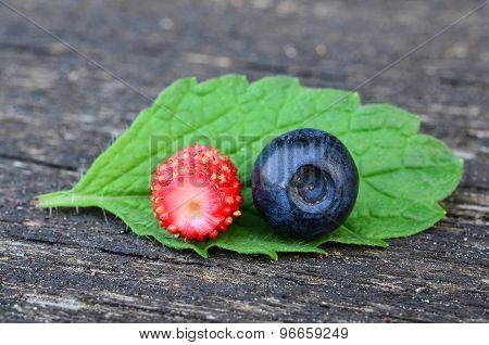 Blueberry And Wild Strawberry