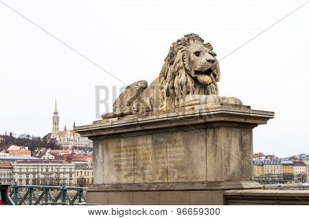 Close Up Lion Statue At  The Chain Bridge, Budapest, Hungary