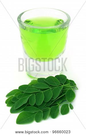 Moringa Leaves With Extract In A Glass