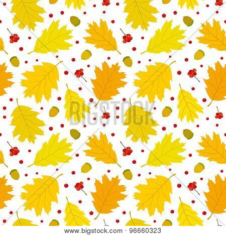 Autumn seamless pattern of Canadian oak's leaves, acorns and rowan berries. White background.