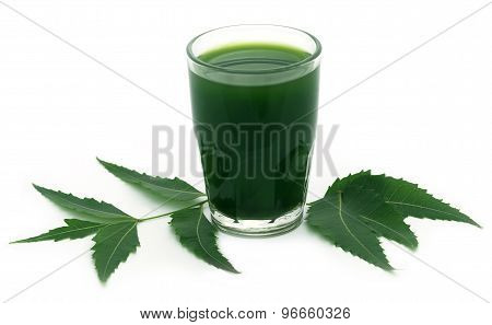 Medicinal Neem Leaves With Extract