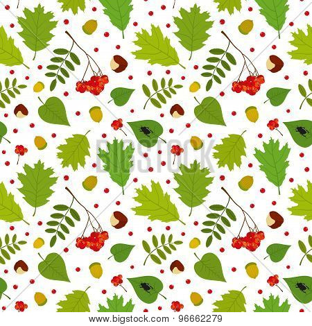 Forest seamless pattern with rowan berry, leaves, acorn, chestnut, beetle. Vector set. White backgro