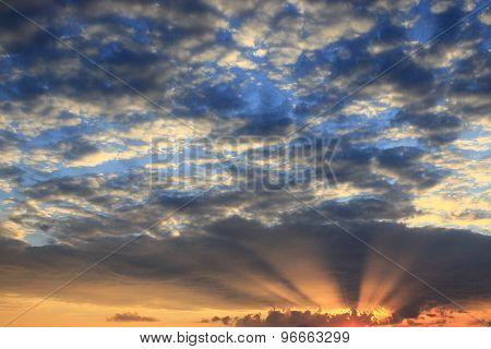dark summer sunset with sun beams