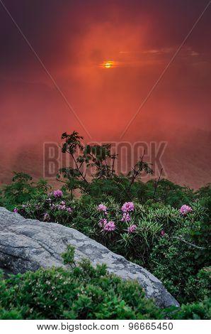 Sunset Through The Fog On Jane Bald