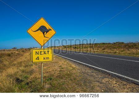 Warning Kangaroo