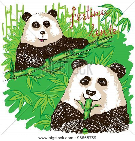 Two Pandas Eating Bamboo.