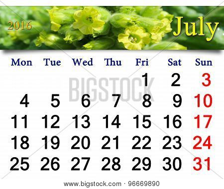 calendar for July 2016 with flowers of tobacco-plant