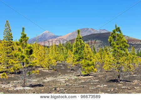 Pico Viejo And El Teide, El Teide National Park, Tenerife, Canary Islands, Spain