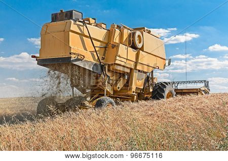 harvester working in wheat field