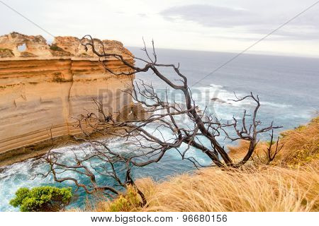 Great Ocean Road, Australia. View Overlooking The Pacific Ocean.